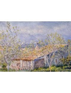 Tytuł: Dom i ogród w Antibes, Autor: Claude Monet