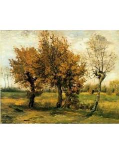 Jesienny krajobraz z czterema drzewami