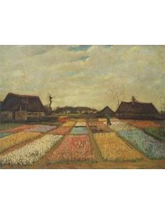 Tytuł: Pola kwiatów, Autor: Vincent van Gogh