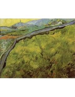 Tytuł: Pole pszenicy o wschodzie, Autor: Vincent van Gogh