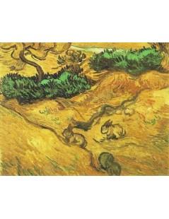 Dwa króliki na polu