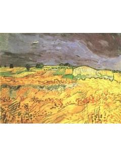 Tytuł: Pole, Autor: Vincent van Gogh