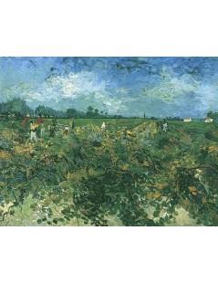 Tytuł: Zielona winnica, Autor: Vincent van Gogh