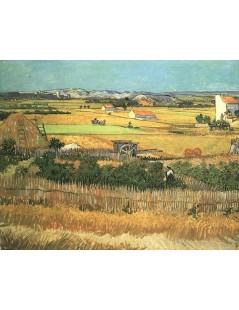 Tytuł: Żniwa przy La Crau, z Montmajour w tle, Autor: Vincent van Gogh
