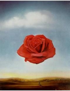 Medytująca róża