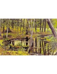 Sadzawka w lesie