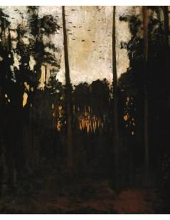 Tytuł: Studium do Głuszca, Autor: Józef Chełmoński
