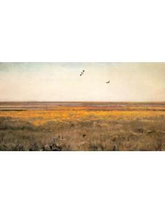 Tytuł: Wiosna. Kaczeńce, Autor: Józef Chełmoński