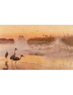 Tytuł: Świt. Królestwo ptaków, Autor: Józef Chełmoński