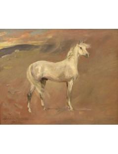 Tytuł: Koń arabski, Autor: Wojciech Kossak