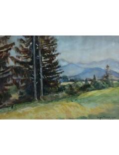 Tytuł: Pejzaż podgórski, Zakopane, Autor: Stefan Filipkiewicz