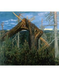 Tytuł: The Broken Pine, Autor: Akseli Gallen-Kallela