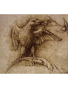Tytuł: Bird on a Branch, Autor: Andrea Mantegna