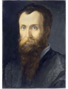 Tytuł: Portrait of Luca Martini, Autor: Agnolo Bronzino