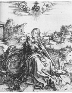 Tytuł: The Virgin with the Dragonfly, Autor: Albrecht Durer