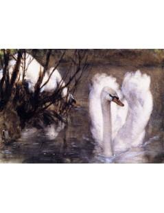 Tytuł: Two Swans, Autor: Adolph Menzel