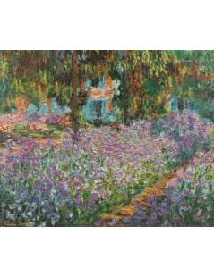 Irysy w ogrodzie Moneta